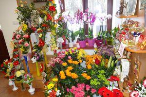 Prodej Kvetin Malenovice Firmy Cz