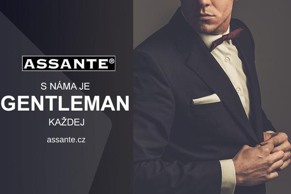 c4088f727e8 ASSANTE (Brno-město) • Firmy.cz