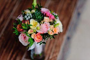 Prodej Kvetin Hodonin Firmy Cz
