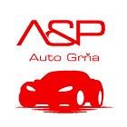 logo - A & P - AUTO GRŇA