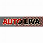 logo - Libor Vašák