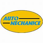 logo - Auto Nechanice
