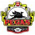 logo Pegas - hotel, pivovar, pivnice