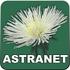 logo Astranet.cz