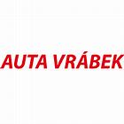 logo - DAVID VRÁBEK