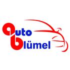 logo - AutoBlumel
