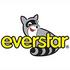 logo EVERSTAR, s.r.o.