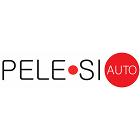 logo - PELE•SI AUTO, s.r.o.