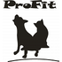 logo Profitpraha.cz