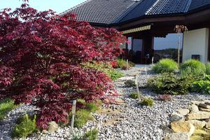 BeGARDEN zahrady - návrhy a realizace zahrad