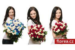 Florea.cz foto 5
